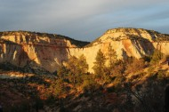 View of white cliffs on the east side of Zion National Park. This view is from a Rhino ATV tour with Mild 2 Wild Rhino Tours.