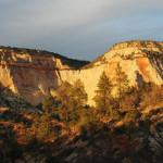 zion-white-cliffs